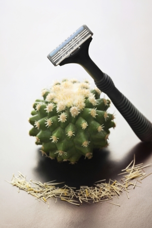 shaver: Cactus with a shaver