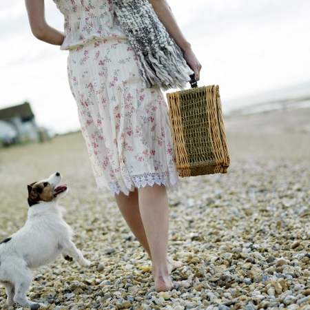 Woman carrying picnic basket with dog following from behind photo