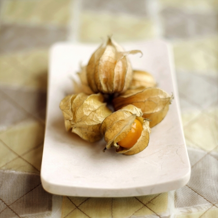 Close up of physalis on a small plate photo