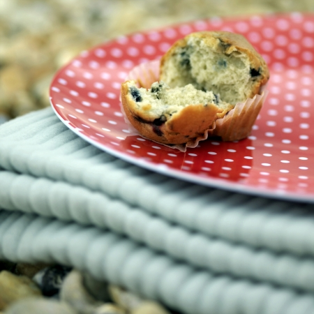 Muffin de manta de picnic plegable photo