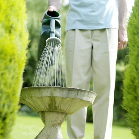 Senior man watering plant photo