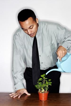 Businessman watering plants 스톡 콘텐츠
