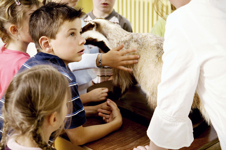paying attention: Children looking at a bear model while listening to their teachers explanation Stock Photo