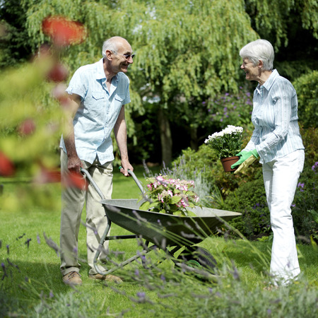 Senior couple working in the garden