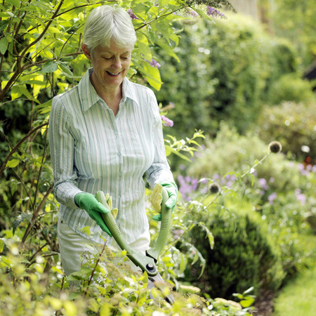 Senior lady doing yard work Stock Photo - 26268253