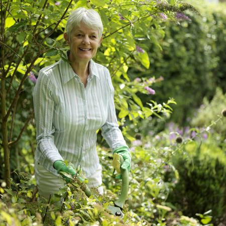 Senior lady doing yard work Stock Photo - 26257579