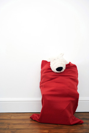 soft toy: A bag full of soft toy