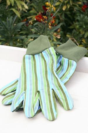 gardening gloves: Gardening gloves