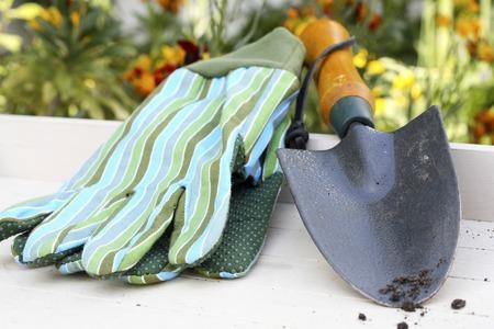 gardening gloves: Hand trowel and gardening gloves
