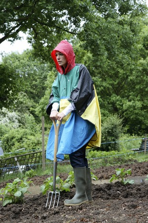 spading fork: Woman in raincoat holding a spading fork in community garden