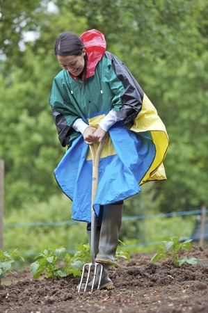 Woman in raincoat using spading fork Stock Photo