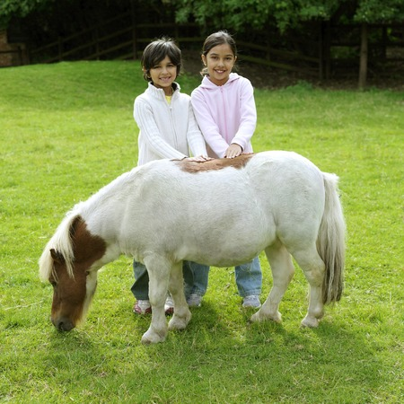 he   my sister: Boy and girl patting a pony