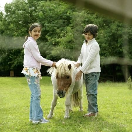 he   my sister: Boy and girl petting a pony