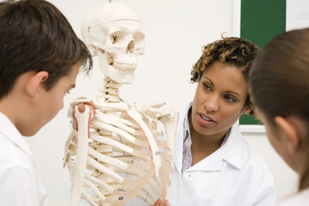Woman showing girl and boy a human skeleton photo