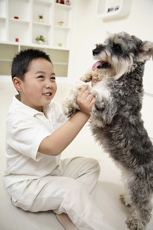 Boy playing with dog photo