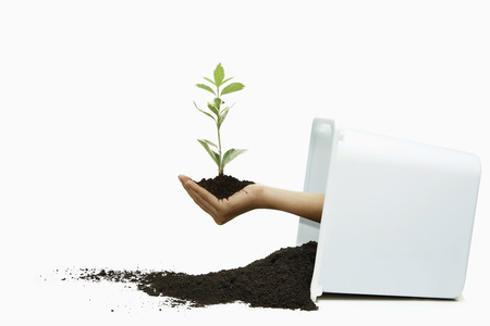 toppled: Human hand holding seedling in soil coming out from toppled container