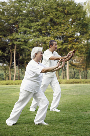 tai chi: Senior couple practising tai chi in the park