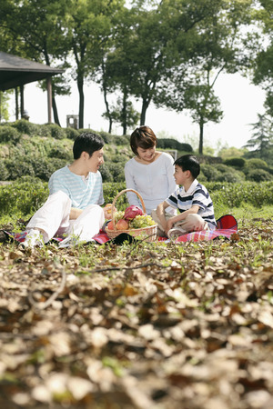 Boy and parents having a picnic in the park Stock Photo