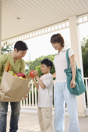 Boy taking apple from mans grocery bag, woman watching photo