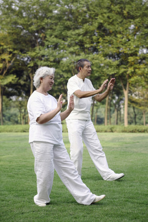 Senior couple practising tai chi in the park photo