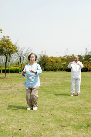 An old couple practicing tai chi in the park photo