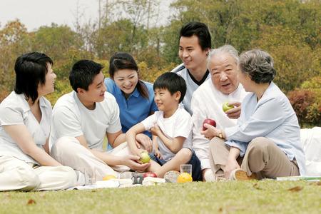 大家族は公園でピクニック