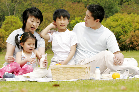 picnicking: A family picnicking in the park