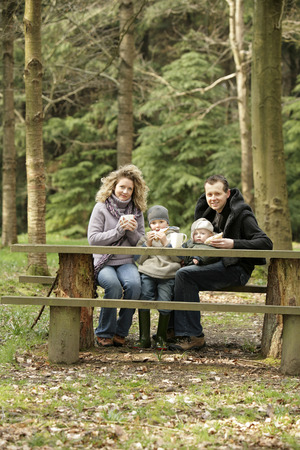 Family picnic at the park photo
