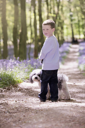 Boy and dog taking a walk in the woods photo