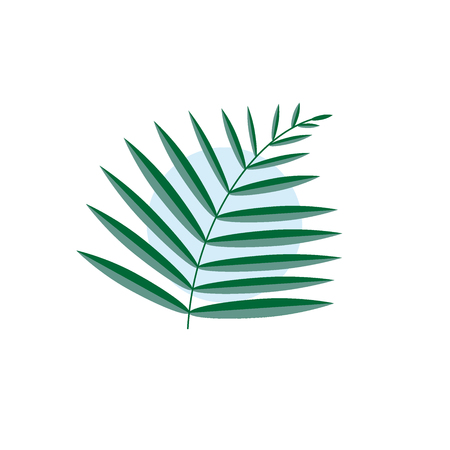 Green vector leaf of a palm tree isolated with a blue circle on a white background Ilustração