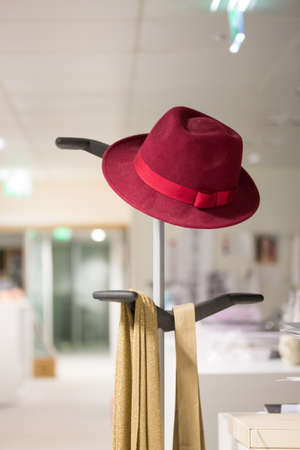 A hat is placed on a coat rack in a company