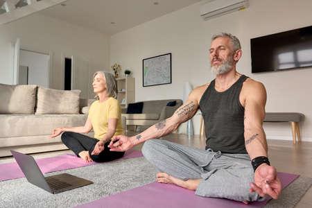 Senior couple meditating doing virtual yoga poses watching online class at home. 免版税图像