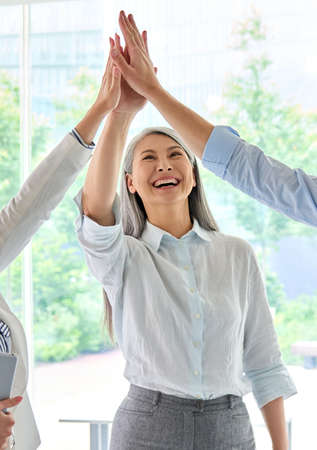 Cheerful colleagues giving high five celebrating project achievements.