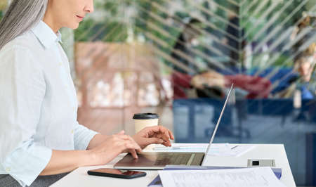 Concentrated mid age businesswoman agent manager working typing using laptop.