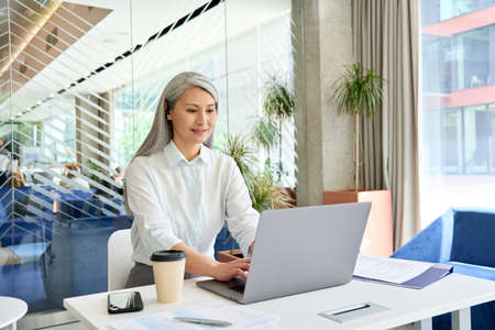 Smiling mid age businesswoman financial manager working typing using pc laptop.