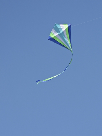 Kite Flying photo
