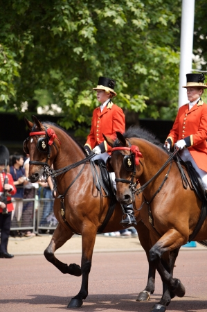 changing colors: Trooping of the Color, London, 2006
