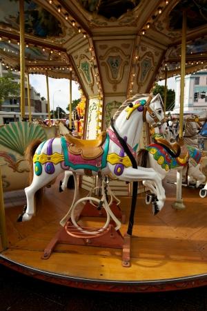 Carousel Horse, Fairground  photo