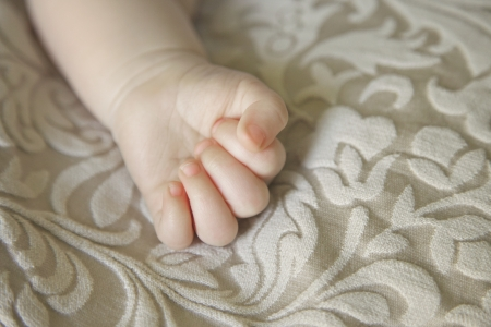 babies hands: Baby