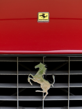 car grill:  Ferrari, Sport car
