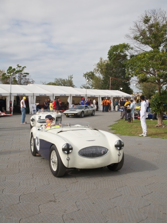 turns of the year: Melbourne Formula One, Austin Healey and Other Racers 2010