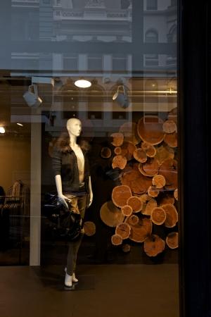 Fashionable window shopping