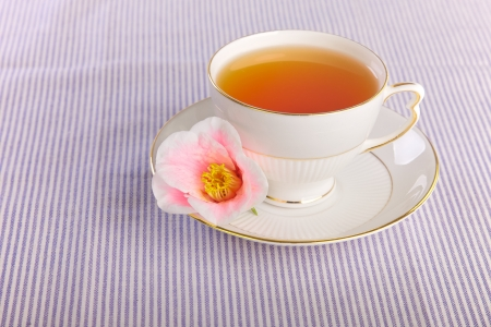 Cup of tea with a flower in a kitchen Stock Photo - 15841330