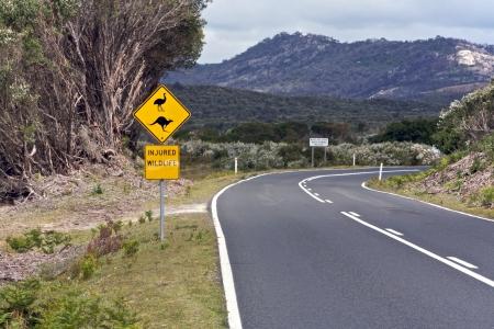 Australian road Stock Photo - 15970069
