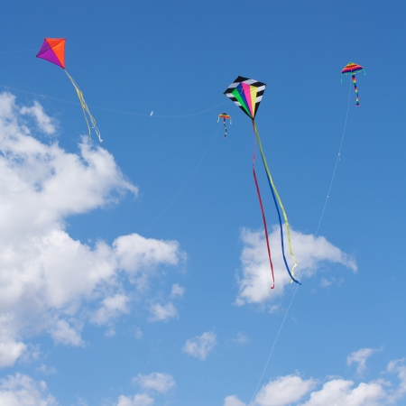Kites flying in the sky  photo