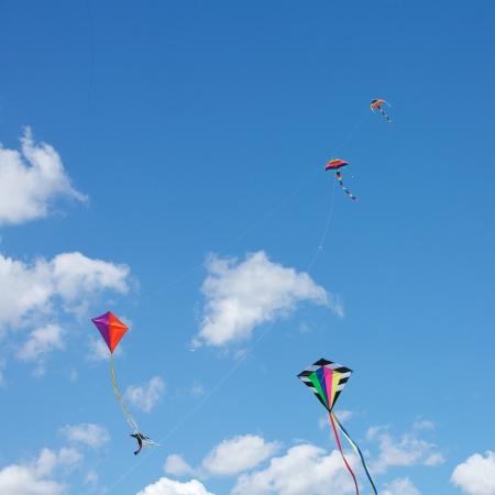 Kite Flying in the sky photo