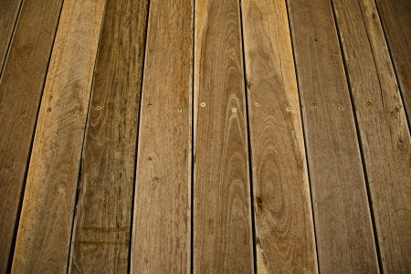 Wood plank for a floor  photo