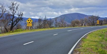 bush fire: Bush fire burnt area and road trip in Australia