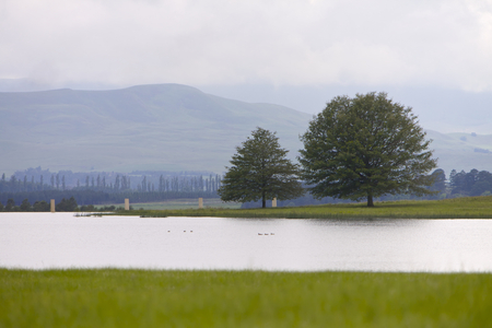 kwazulu natal: Trees and dam a peaceful scene in Drakensberg, South Africa Stock Photo