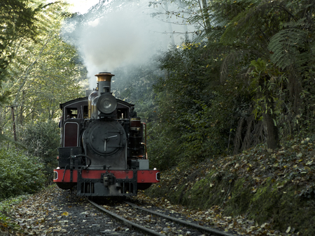 ranges: Puffing Billy train ride through the Dandenong Ranges near Melbourne, AustraliaMELBOURNE, AUSTRALIA - Puffing Billy train ride through the Dandenong Ranges very historic train trip